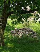 Gartengestaltung: Steingarten in der Gartenplanung