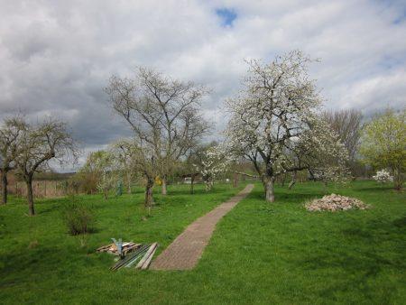 Baumaterialien im Garten