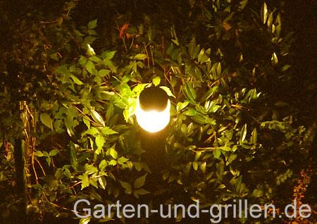 Foto: leuchtende Pollerleuchte in Gartengrün bei Nacht
